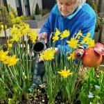 Sensory gardens at Vida Grange