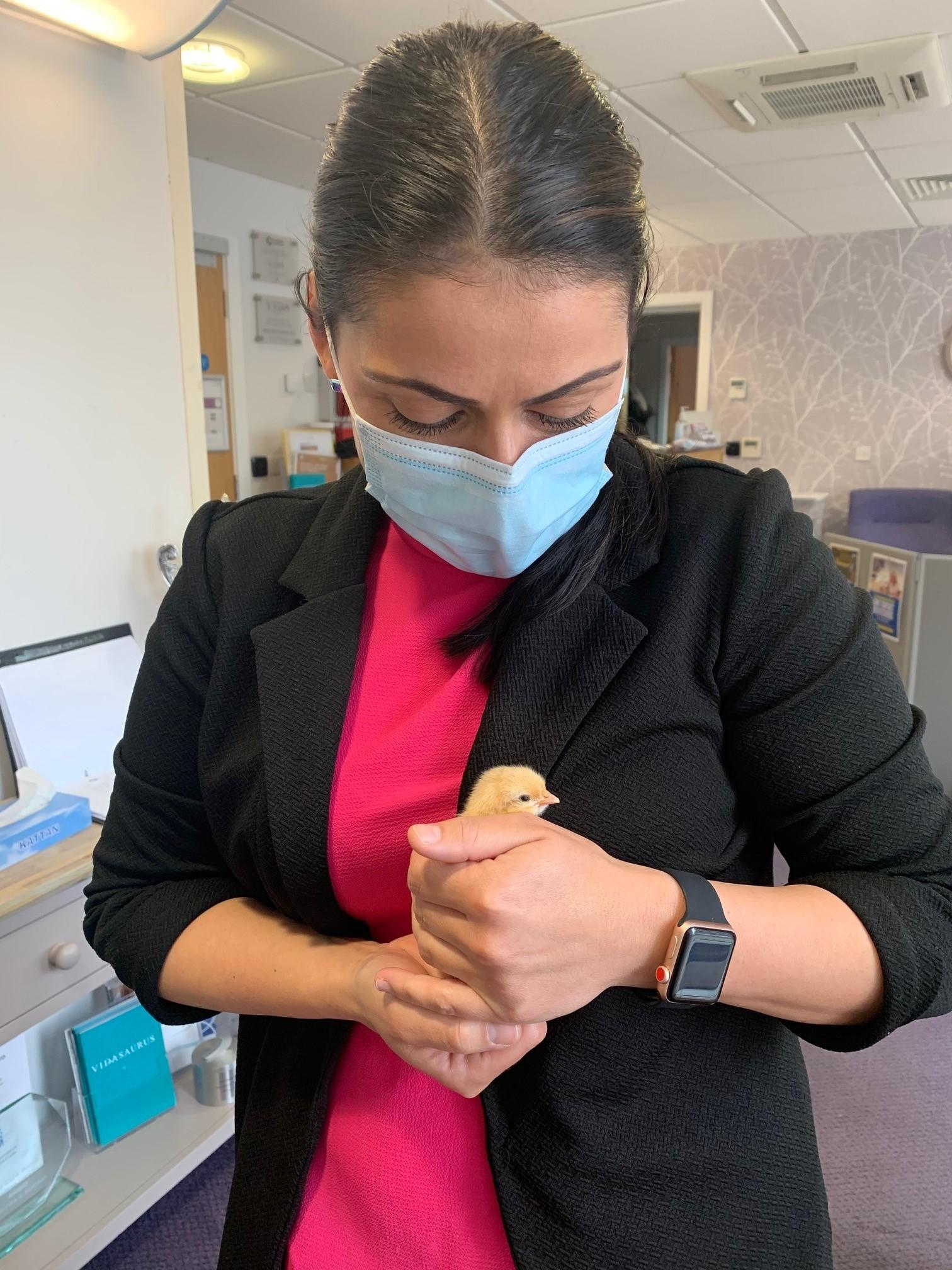 Animal therapy at Vida Hall Harrogate